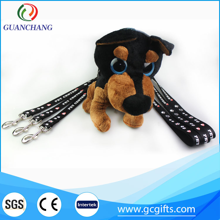 黑色宠物带与项圈